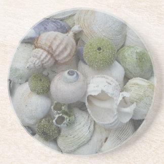アラスカからの貝殻 コースター
