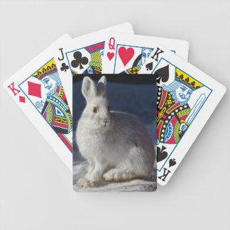 アラスカのかんじきノウサギ バイスクルトランプ