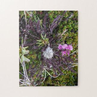アラスカのツンドラ植物を特色にする複雑な写真のパズル ジグソーパズル