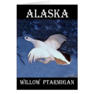 アラスカのヤナギのライチョウ カード