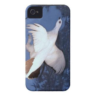 アラスカのヤナギのライチョウ Case-Mate iPhone 4 ケース