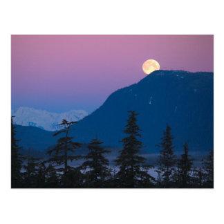 アラスカの日暮れ ポストカード