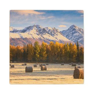 アラスカの農業 ウッドコースター