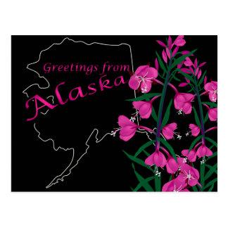 アラスカの郵便はがきからの挨拶 ポストカード