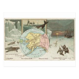 アラスカの1889年のヴィンテージカード ポストカード