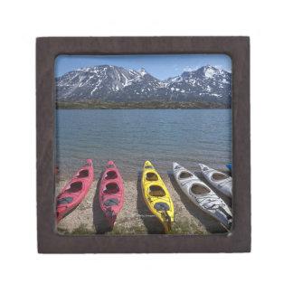 アラスカのBernard湖のカヤックのパノラマ ギフトボックス