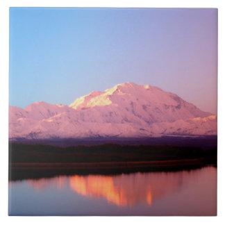 アラスカのDenaliの国立公園、デナリの 正方形タイル大