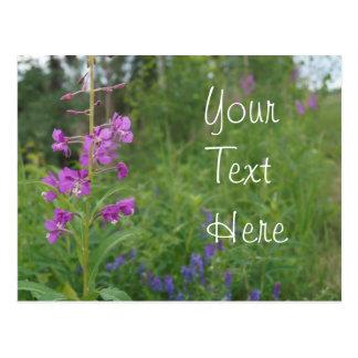 アラスカのFireweedの野生の花 ポストカード