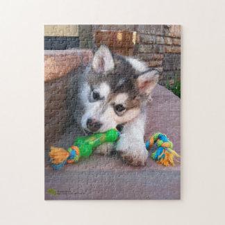 アラスカンマラミュートの子犬のクローズアップの写真 ジグソーパズル