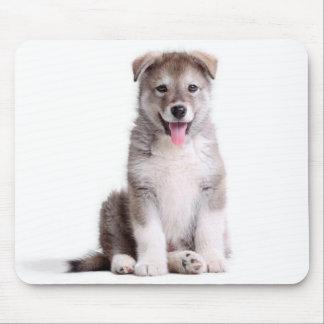 アラスカンマラミュートの小犬のマウスパッド マウスパッド