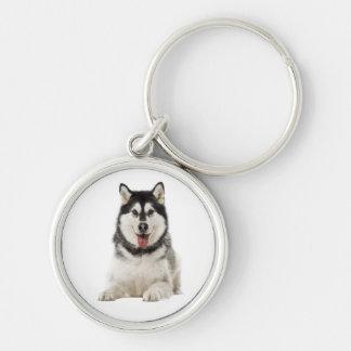 アラスカンマラミュートの灰色および黒い小犬 キーホルダー
