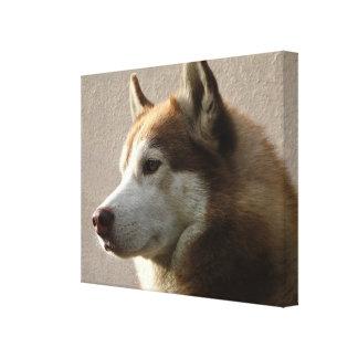 アラスカンマラミュート犬の写真 キャンバスプリント
