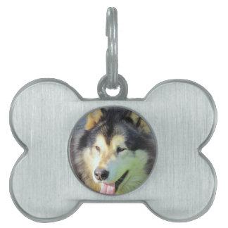 アラスカンマラミュート犬 ペットネームタグ
