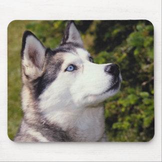 アラスカンマラミュート-犬のmousepad マウスパッド