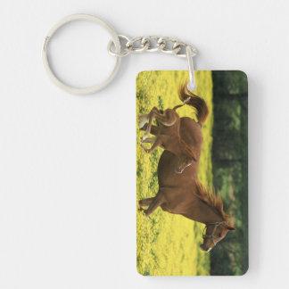 アラビアの子馬およびロバのランニング キーホルダー