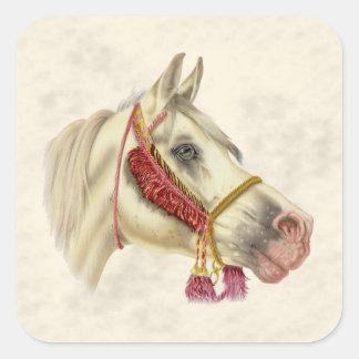 アラビアの種馬 スクエアシール