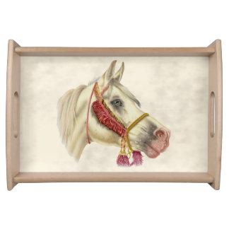 アラビアの種馬 トレー