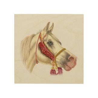 アラビアの馬のポートレート ウッドウォールアート