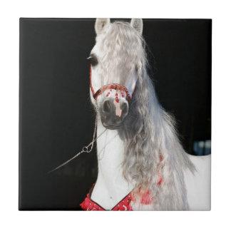 アラビアの馬の白 タイル