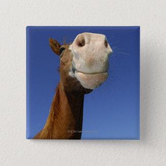 アラビアの馬、ババリア、ドイツ 5.1CM 正方形バッジ