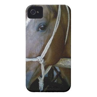 アラビア Case-Mate iPhone 4 ケース