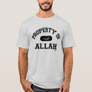 アラーの特性 Tシャツ