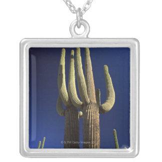 アリゾナのオルガン管のサボテンの国有記念物 シルバープレートネックレス