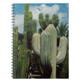 アリゾナのサボテン ノートブック