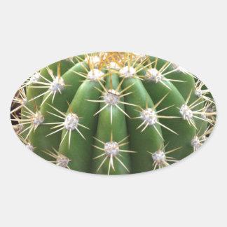 アリゾナのサボテン 楕円形シール