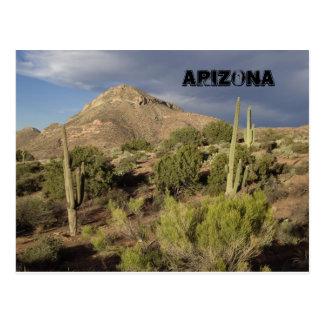 アリゾナの景色の郵便はがき ポストカード
