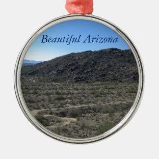 アリゾナの砂漠の美しい メタルオーナメント