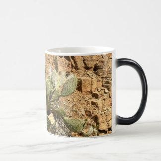 アリゾナ/セドナ/サボテン/ウチワサボテン マジックマグカップ