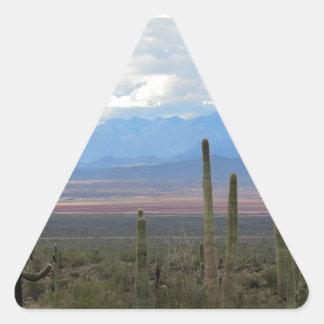アリゾナ 三角形シール
