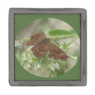 アリゾナMetalmarkの蝶 ガンメタルラペルピン