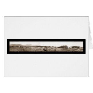 アルカディアの馬トラック写真1908年 カード