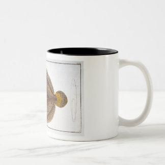 アルゴスのもがき(Pleuronectesアルゴス)のプレートXLVI ツートーンマグカップ