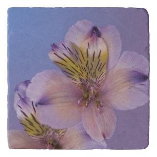 アルストロメリア属の花 トリベット
