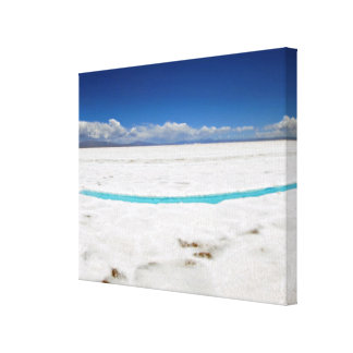 アルゼンチンの塩の平たい箱の全景 キャンバスプリント