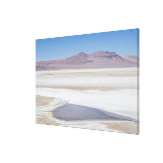 アルゼンチンへの道の塩湖 キャンバスプリント