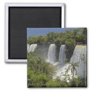 アルゼンチン、日曜日のIguacuの滝 マグネット
