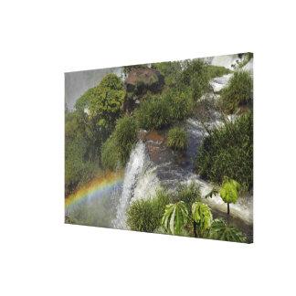 アルゼンチン、Iguacuの滝。 Iguacuの虹 キャンバスプリント