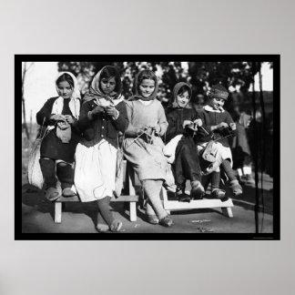 アルバニア1923年で編んでいる女の子 ポスター