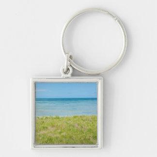 アルバ、草が茂ったビーチおよび海 キーホルダー