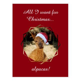 アルパカのクリスマスの郵便はがき ポストカード
