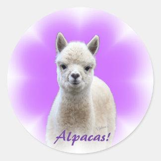 アルパカの希望のステッカー ラウンドシール
