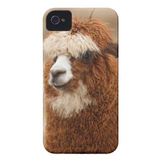 アルパカのiPhoneの場合 Case-Mate iPhone 4 ケース