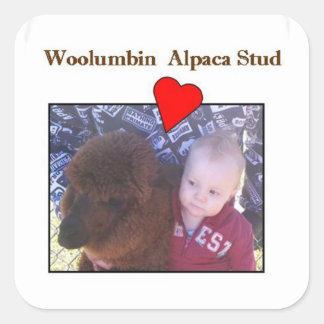 アルパカ及び幼児愛はあります… ステッカー