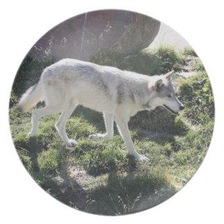 アルファ女性のオオカミのディナー用大皿 プレート