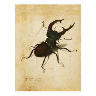 アルブレヒトDurerのクワガタムシのルネサンスのヴィンテージの芸術 ポストカード