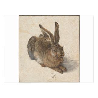 アルブレヒトDurer著ノウサギ ポストカード